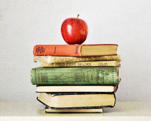 60691332b8757547548e16aceb5d92fc--school-photography-book-photography